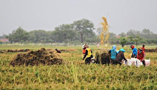 Foto Mau Lebaran, Upah Riil Buruh Tani hingga Pembantu Rumah Tangga Malah Turun