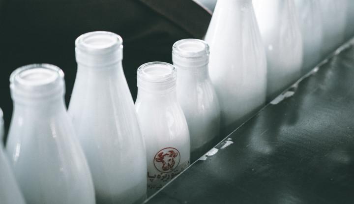 Susu Kecoa Dipercaya Kaya Protein, Mau? - Warta Ekonomi