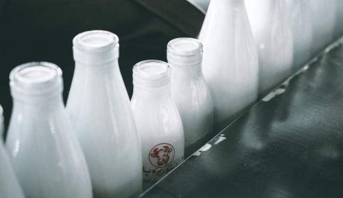 Foto Padukan Industri Susu dengan Teknologi, Aspek Ini Enggak Akan Rugi