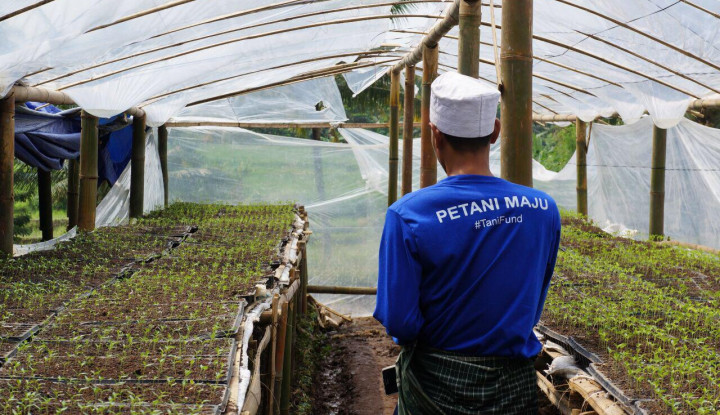 Santai Hadapi Kompetitor, TaniHub: Justru Buka Akses Pasar untuk Petani