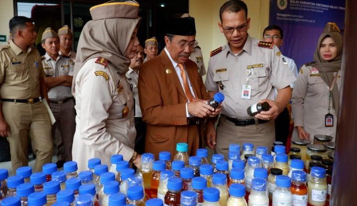 Makin Legit, Produk Kelapa Sawit Asal  Riau Diminati Dunia - Warta Ekonomi