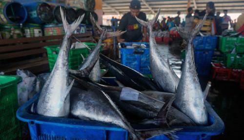 Dirut PD Pasar Medan Berikan Kemudahan pada Pedagang Ikan Pasar Induk