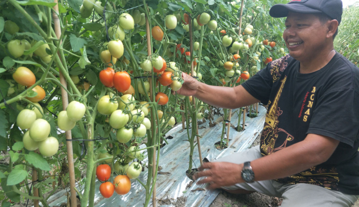 Dagangan Produk Organik di London, Indonesia Raih Transaksi US$1,5 Juta - Warta Ekonomi