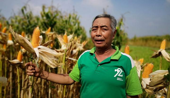 Demo atas Nama Petani Bermuatan Politik? Jadi, Kepentingan Siapa yang Disuarakan? - Warta Ekonomi