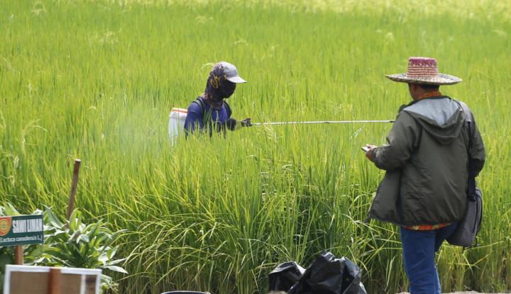 Serap Aspirasi, Kementan Klaim Produksi dan Pendapatan Petani Meningkat - Warta Ekonomi