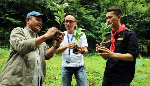 Foto Dorong Ekonomi Rakyat, FIFGROUP Padalarang Tanam 210 Pohon Kopi