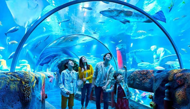 Sea Life Malaysia, Akuarium Raksasa Berkonsep Interaktif - Warta Ekonomi
