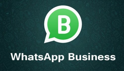 Kembangkan UMKM, Nobu Bank Hadirkan WhatsApp for Business
