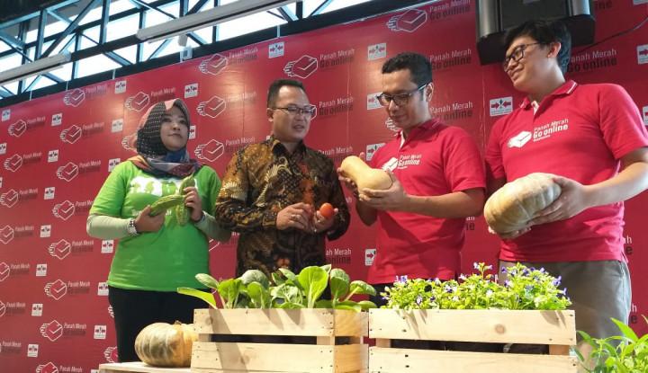 Benih Hortikultura Produksi Ewindo Kini Bisa Dibeli Lewat 2 E-Commerce Ini - Warta Ekonomi