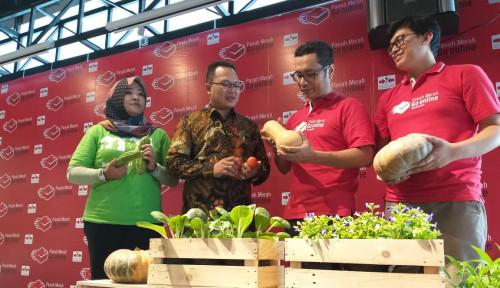 Foto Benih Hortikultura Produksi Ewindo Kini Bisa Dibeli Lewat 2 E-Commerce Ini