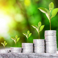 Sinarmas Asset Management Buka Suara Soal Nasib Reksadana yang Disuspensi OJK
