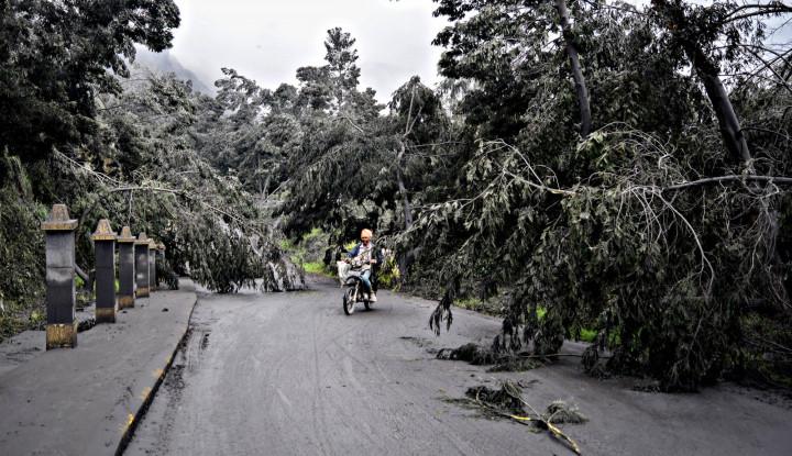Ngeri... Bencana di Indonesia Punya Waktu Ulang Tahun - Warta Ekonomi