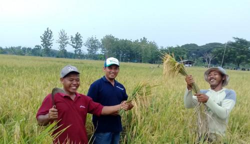 Pertamina EP Asset 4 Field Cepu Dorong Pengembangan Pertanian Organik