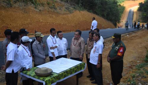 Foto Inilah Plus Minus Kalimantan Tengah Jadi Ibu Kota Baru