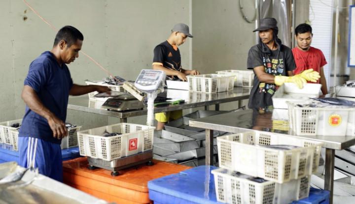 Jualan Tuna ke Mancanegara, Pengusaha asal Aceh Ini Raup Omzet Rp5 Miliar - Warta Ekonomi