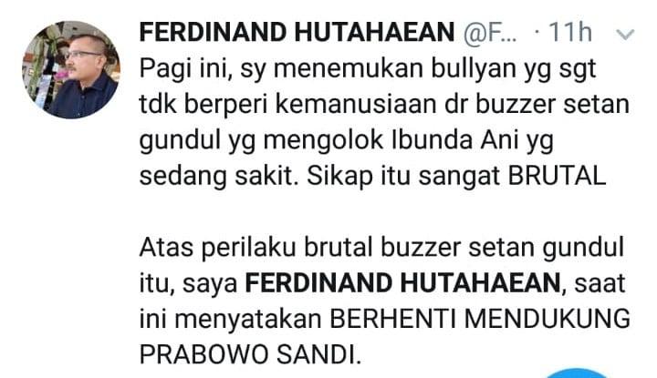 Ferdinand Hutahean : Yang Brutal Ternyata Setan Gundul - Warta Ekonomi