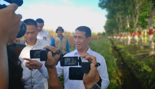 Foto Keberanian Menteri Amran Sikat Mafia Pangan, Diacungi Jempol DPD RI