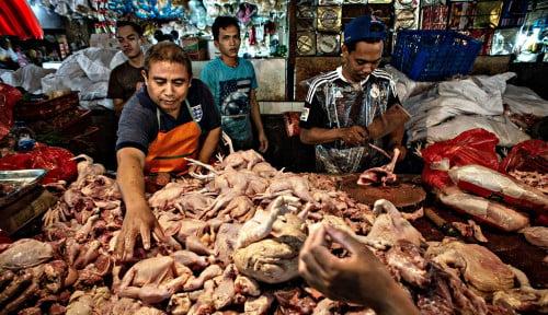 Daging Ayam Penyumbang Terbesar Inflasi Juni 2020