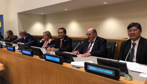 Foto Indonesia Ungkap Konsep Sukses Bank UMKM di Forum PBB