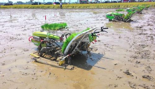 Foto Amran: Teknologi Kunci Masa Depan Pertanian Indonesia