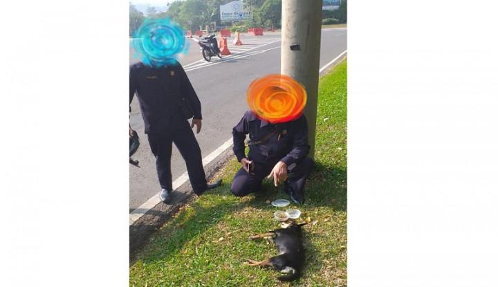 Anjing Si Ibu Hilang, Eh Penjaga Masjid Dituntut Ganti Rugi Rp35 Juta