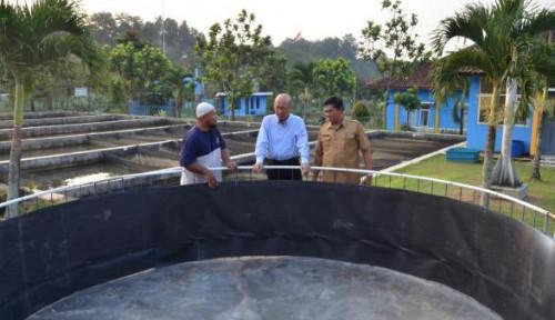 Foto Tingkatkan Produksi Ikan Nila, Jabar Harus Terapkan Bioflok