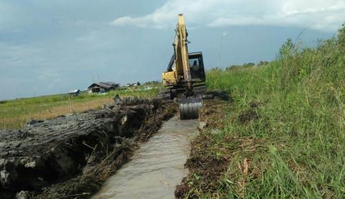 Foto Ekonom Unisba: Riset Bappenas Bukti Program Pertanian Berkontribusi Paling Besar Bangun Negara