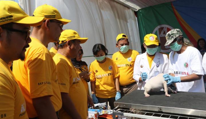 Hindari Bahaya Rabies, Kementan Bagikan 2.000 Dosis Vaksinasi Gratis di Garut - Warta Ekonomi