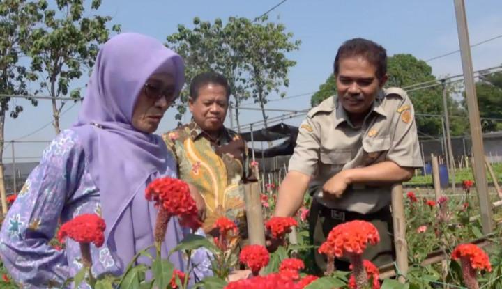 Juara! Bogor Raup Puluhan Miliar Ekspor Tanaman Hias ke 10 Negara - Warta Ekonomi