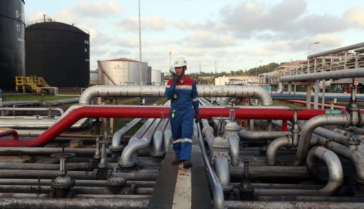 Dorong Energi Terbarukan, Pertamina Targetkan Kapasitas PLTP Sentuh 1.112 MW - Warta Ekonomi