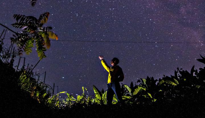 Ada Objek Asing Masuk ke Tata Surya Matahari? Waduh!! - Warta Ekonomi