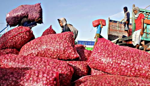 Bantu Masyarakat Terdampak Covid-19, Bea Cukai Aceh Hibahkan 24,5 Ton Bawang Merah