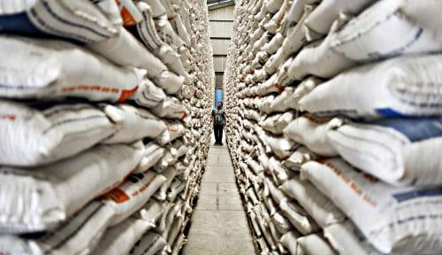 Foto CIPS: Indonesia Harus Hapus Hambatan Nontarif dalam Perdagangan
