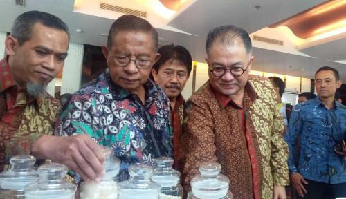 Foto BPDP Kelapa Sawit Tampilkan Hasil Riset Sawit Nasional