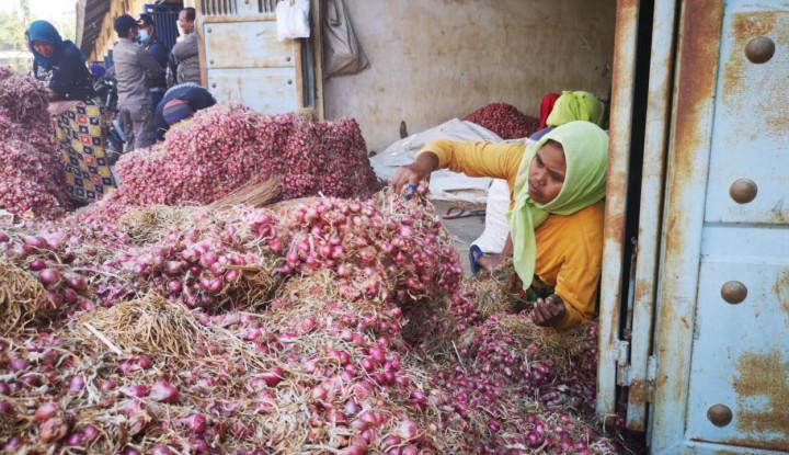Ekspor Bawang Merah Probolinggo Serbu Thailand