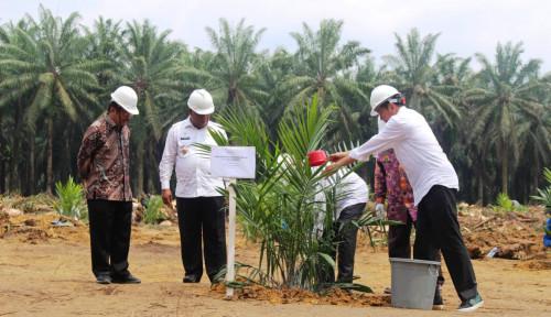 Foto Tahun Ini, Kementan Klaim PDB Pertanian Tumbuh Luar Biasa