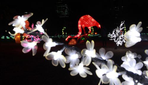 Foto Indahmya Taman Lampu Di Monas