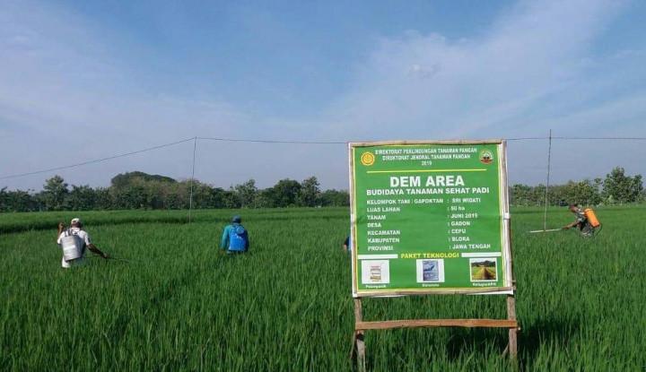 Kementan Dorong Penggunaan Pestisida Nabati Ramah Lingkungan - Warta Ekonomi