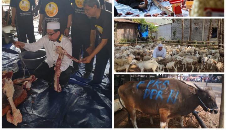 PKS Kurban Puluhan Ribu Sapi dan Domba untuk Rakyat