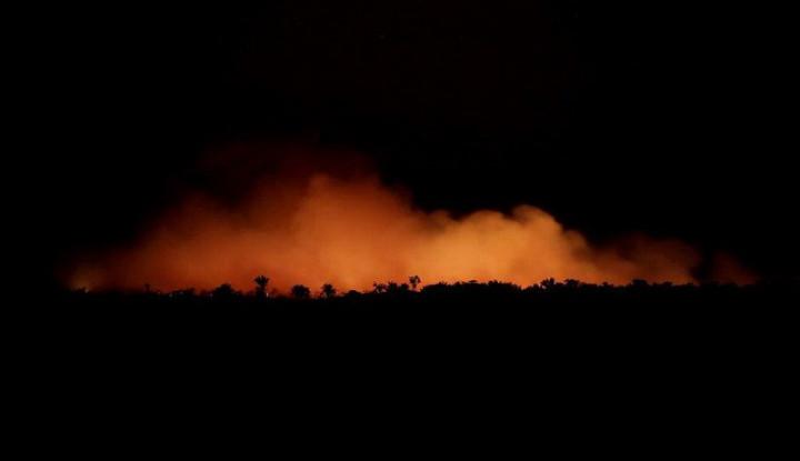 Presiden Brasil: Jangan Ikut Campur Soal Kebakaran Hutan Amazon! - Warta Ekonomi