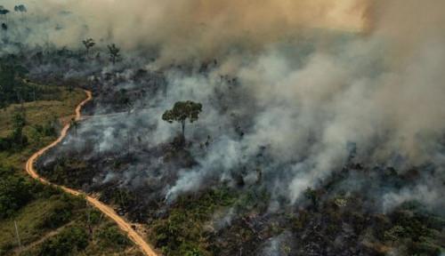 Foto Kebakaran di Amazon Bertambah Hingga Ratusan Titik