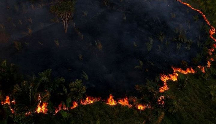 Komit 7 Negara untuk Lindungi Paru-Paru Dunia Hutan Amazon