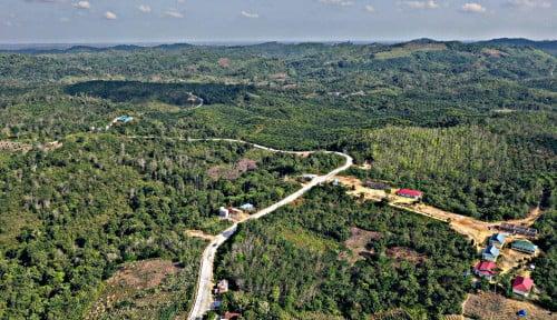 Foto Akhirnya... Jubir Luhut Bilang: Proyek Ibu Kota Baru Bisa Saja Diundur karena Corona