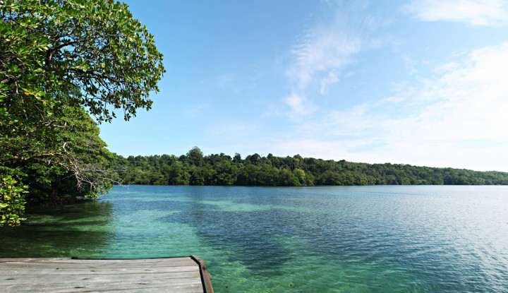 Lima Pulau Eksotis yang Sajikan Surga Bawah Laut di Indonesia Timur