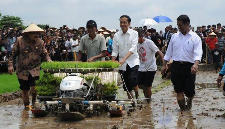 Hari ini, Jokowi Akan Lihat Langsung Penanganan Karhutla di Riau - Warta Ekonomi