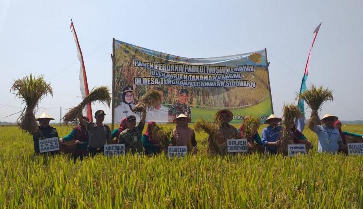 Musim Kemarau, Petani Sragen Panen Padi 9,4 Ton Per Hektar - Warta Ekonomi