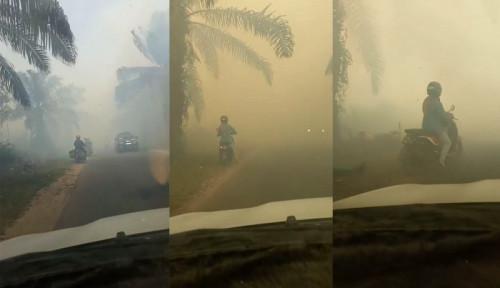 Foto Video: Pengendara Motor di Kalimantan Tabrak Pohon Sawit karena Asap Viral di Medsos