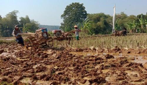 Foto Atasi Kekeringan, Petani Purwakarta Optimalkan Pompa Bantuan Kementan