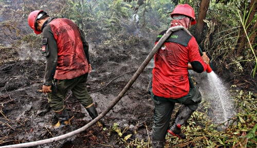 Foto Jokowi Ditantang Bongkar Daftar Perusahaan Pembakar Hutan, Berani?