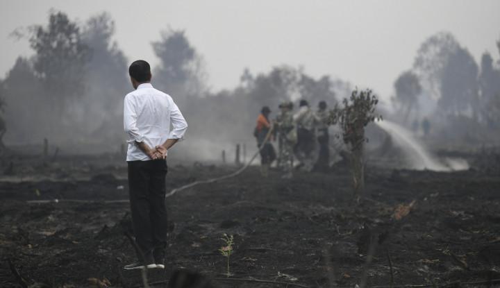 Soal Foto Jokowi Tinjau Karhutla, Yunarto Sindir Pakai Huruf Gede-Gede - Warta Ekonomi